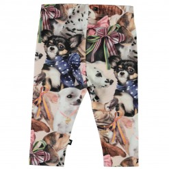 Molo Leggings - Puppy Love - Hundevalpe print