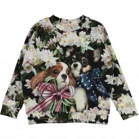 Molo sweatshirt Maxi - Pretty Puppies - Blomster og hundehvalpe print