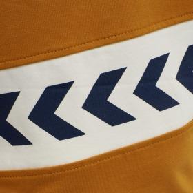 Hummel t-shirt Clement langærmet - pumpkin spice - Gylden orange