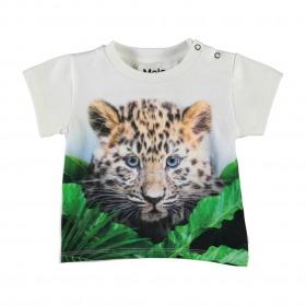 Molo T-shirt baby - Emilio - Jungle Cub